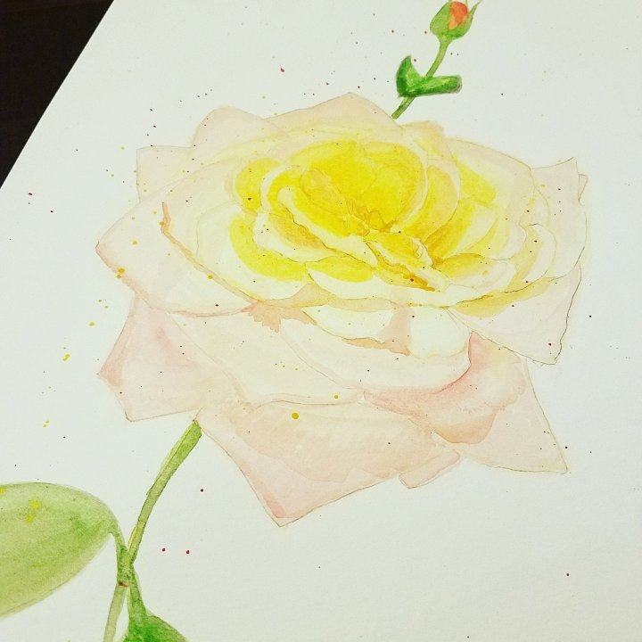 Watercolor My World